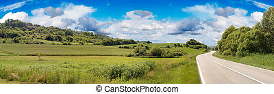 Country Road Panorama