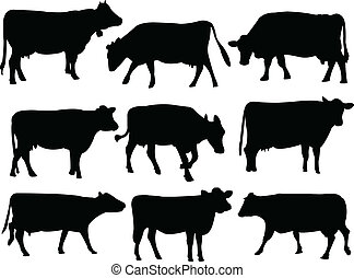 Cow silhouette collection - vector