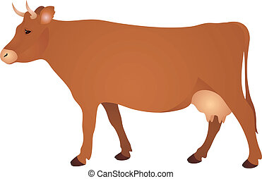 Brown Cow Vector Illustration on white background