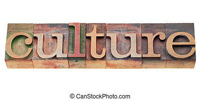 culture - isolated word in vintage wood letterpress printing blocks