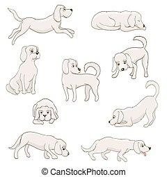 cute cartoon dog in various poses. vector illustration