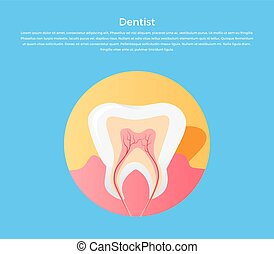 Dental Care Tooth Icon