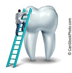 Dentist Checkup