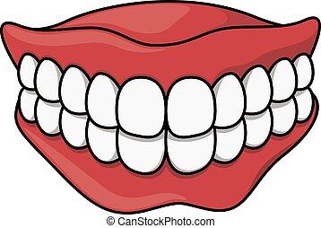 dentures cartoon illustration