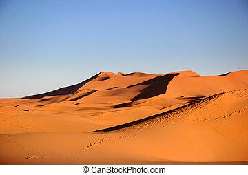 Desert, Sahara, Morocco