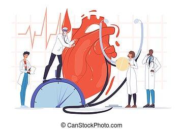 Doctor cardiologist team human heart examination