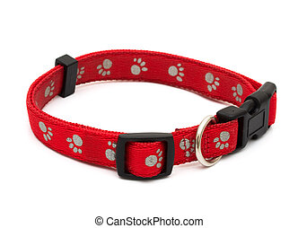 A red dog collar isolated on a white background