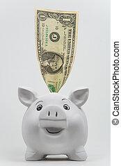 Dollar in a Piggy Bank