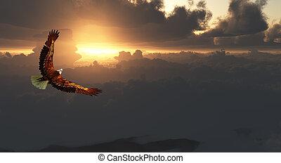 Eagle in Flight Above Dramatic Cloudscape