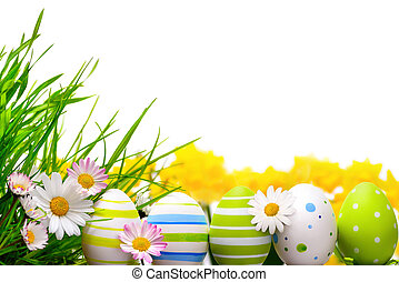 Border arranged with Easter eggs, little spring flowers and grass on white background