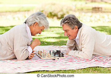 Elderly couple playing chess