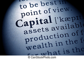 Fake Dictionary, Dictionary definition of the word capital.