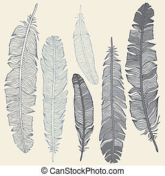 Vintage Feather vector set. Hand drawn illustration.