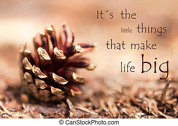 Fir Cone with Saying Its the Little Things That Make Life Big