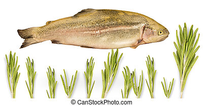 fish trout swimming in spices isolated on white background