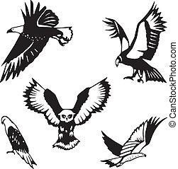 Five stylized birds of prey