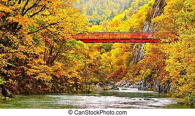 Footbridge Across Toyohiro River in Jozankei, Hokkaido, Japan during fall season.