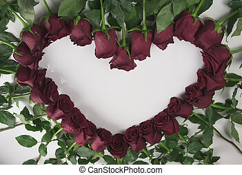 Frame in the form heart of red roses with water droplets on a white background