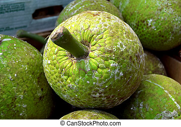 Fresh breadfruit in market in Birmingham city center