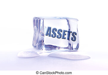 The word assets frozen inside an ice cube