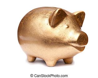 Golden pig moneybox