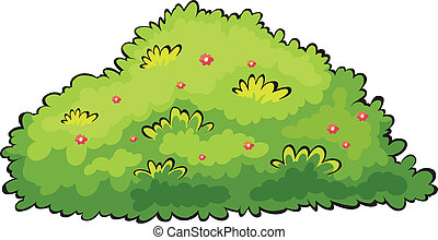 Illustration of a green bush on a white background