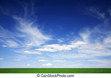 Green field, blue skies, white clouds in spring