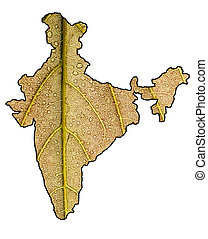 Green India with clipping mask