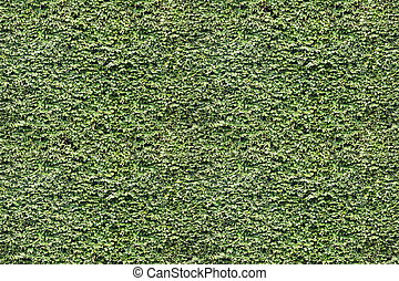 Green leaf wall. Seamless Endless pattern