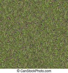 Green Meadow Grass. Seamless Tileable Texture.