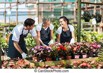 garden workers working in nursery