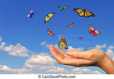 Hand Holding Released Buttterflies Against a Sky Background