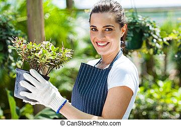 nursery worker in greenhouse