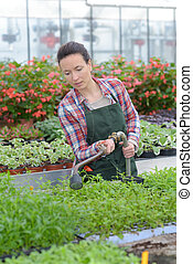 happy female nursery worker in greenhouse
