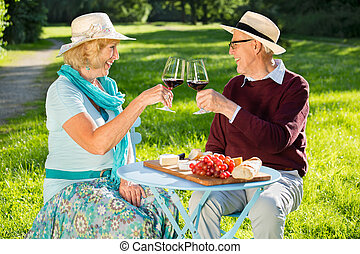 Happy senior couple clinking glasses in the park.