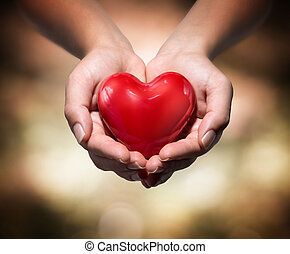 heart in heart hands