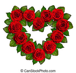 Heart of red roses. Isolated on white background