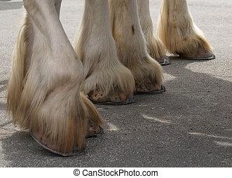 Heavyweight Hooves