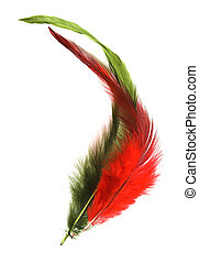 High-key feathers against a white background