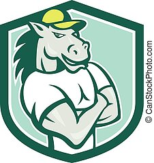 Horse Arms Crossed Shield Cartoon