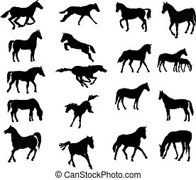 Horses various vector-silhouettes