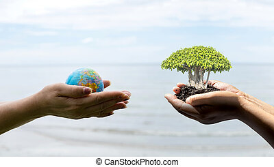 Human hand holding global in soil with little green tree.