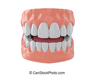 human jaw with white healthy straight teeth, correct bite, 3d render