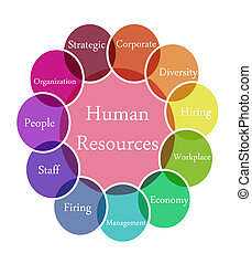 Color diagram illustration of Human Resources