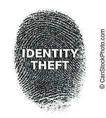 Identity theft (concept)