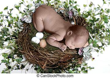 Newborn Sleeping atop Bird Nest With Eggs