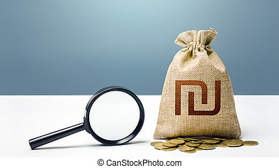 Israeli shekel money bag and magnifying glass. Financial audit and monitoring of suspicious capital and transactions. Search for beneficiaries. Budget check. Attracting investments financing.