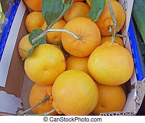 Juicy oranges of Sicily for sale in a box from the grocery store down the street