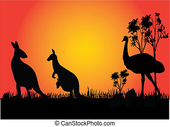 kangaroo and emue in the sunset