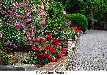 Landscape design with red roses in garden.